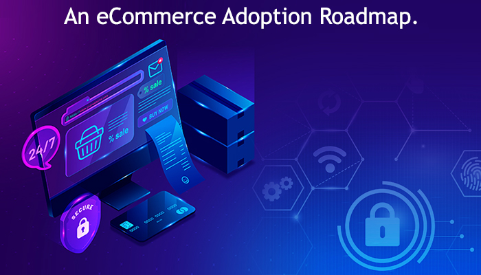 ecommerce adoption roadmap
